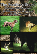 The Poachers Story