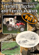 Terriers Lurchers and Ferrets at Work