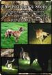 The Poachers Story